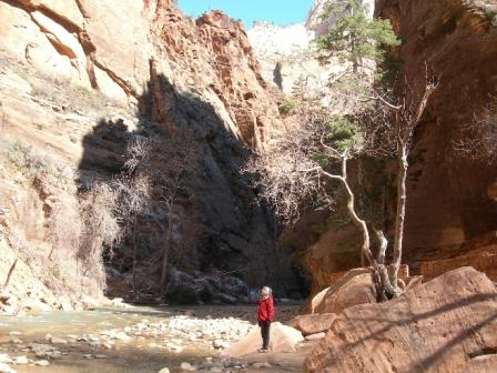 upper-zion-canyon